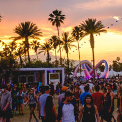 Coachella: Satire, Satisfaction & Sunscreen
